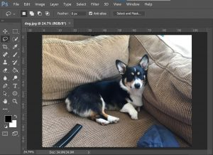 How to Remove unwanted object using Photoshop