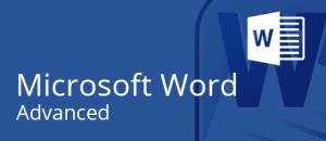 Microsoft Word training @Intellisoft, Singapore